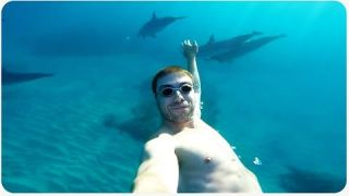 This Guy Discovers He's Swimming With A Pod of Dolphins
